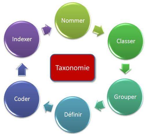 Quelle taxonomie pour nos chroniques?