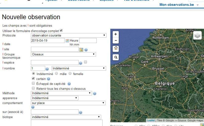 Comment encoder au mieux vos observations dans Observations.be, la base de données naturaliste accessible pour toutes vos observations?