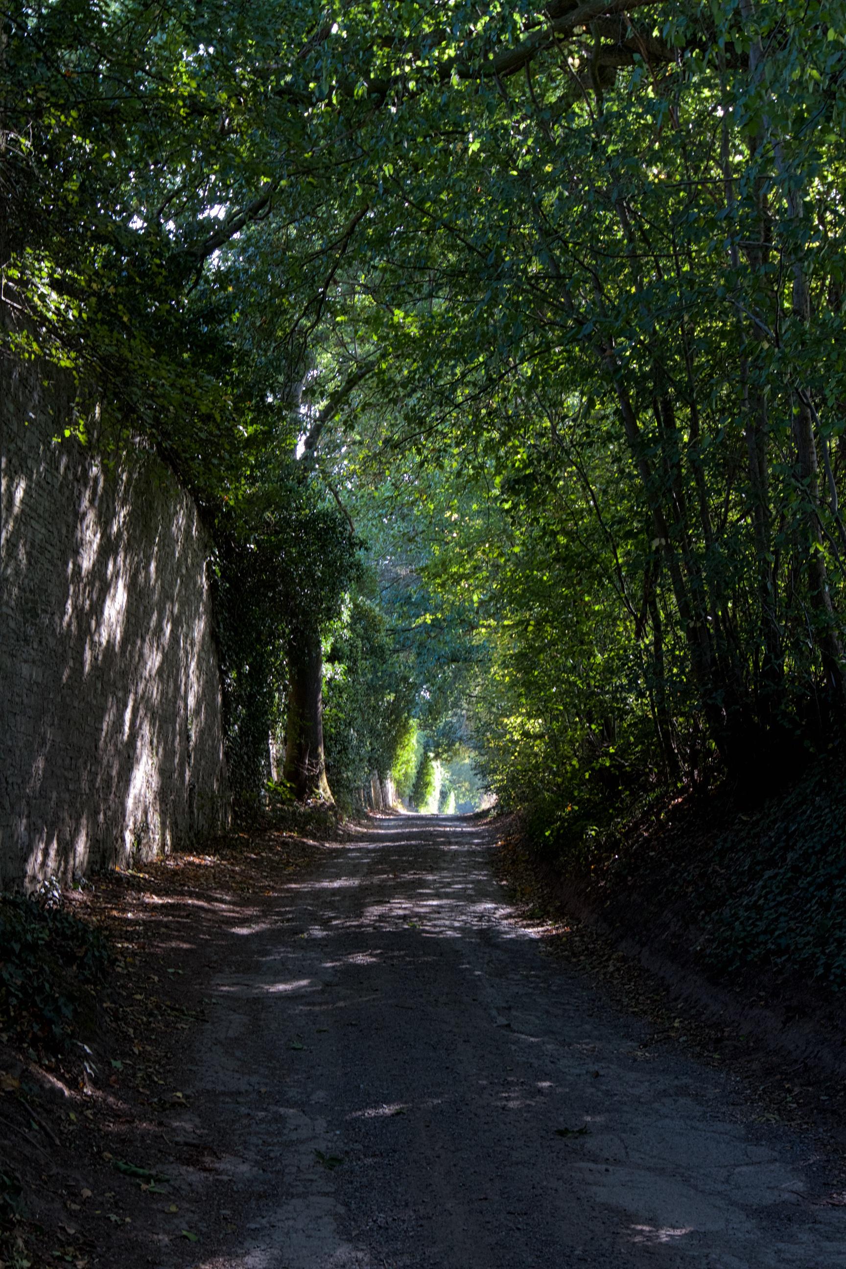 Mur de l'abbaye, Michel Raj